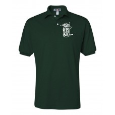 Carrcroft Polo